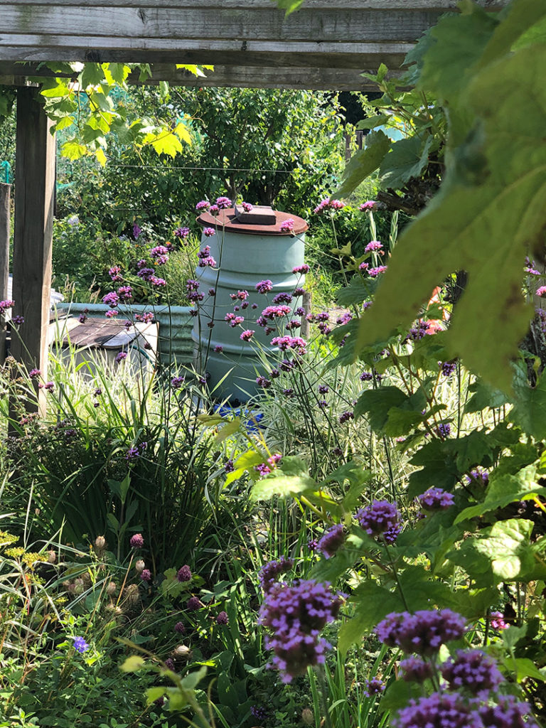 A Little More Allotment